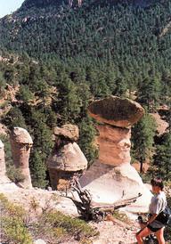 New Mexico's Hoodoos