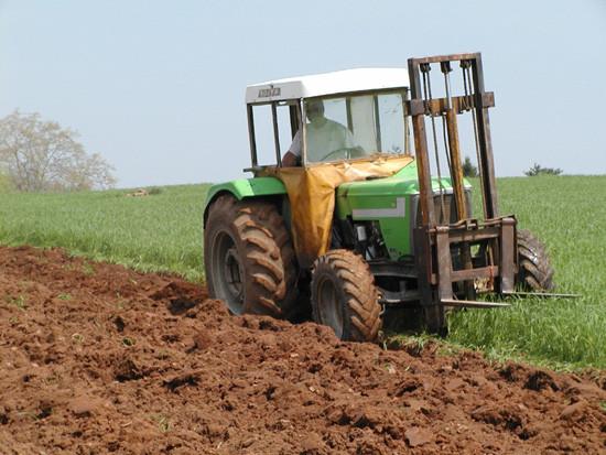 Tom-plowing3.jpg