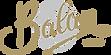 balan-logo.png