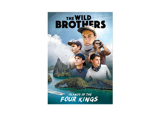 The Wild Brothers: Islands of the Four Kings