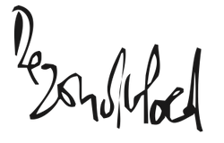 logo zondvloed