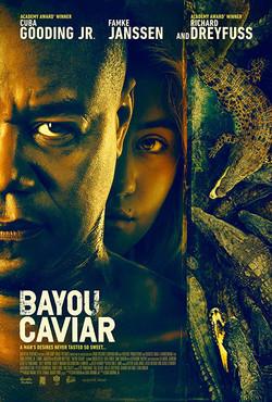 bayou_poster