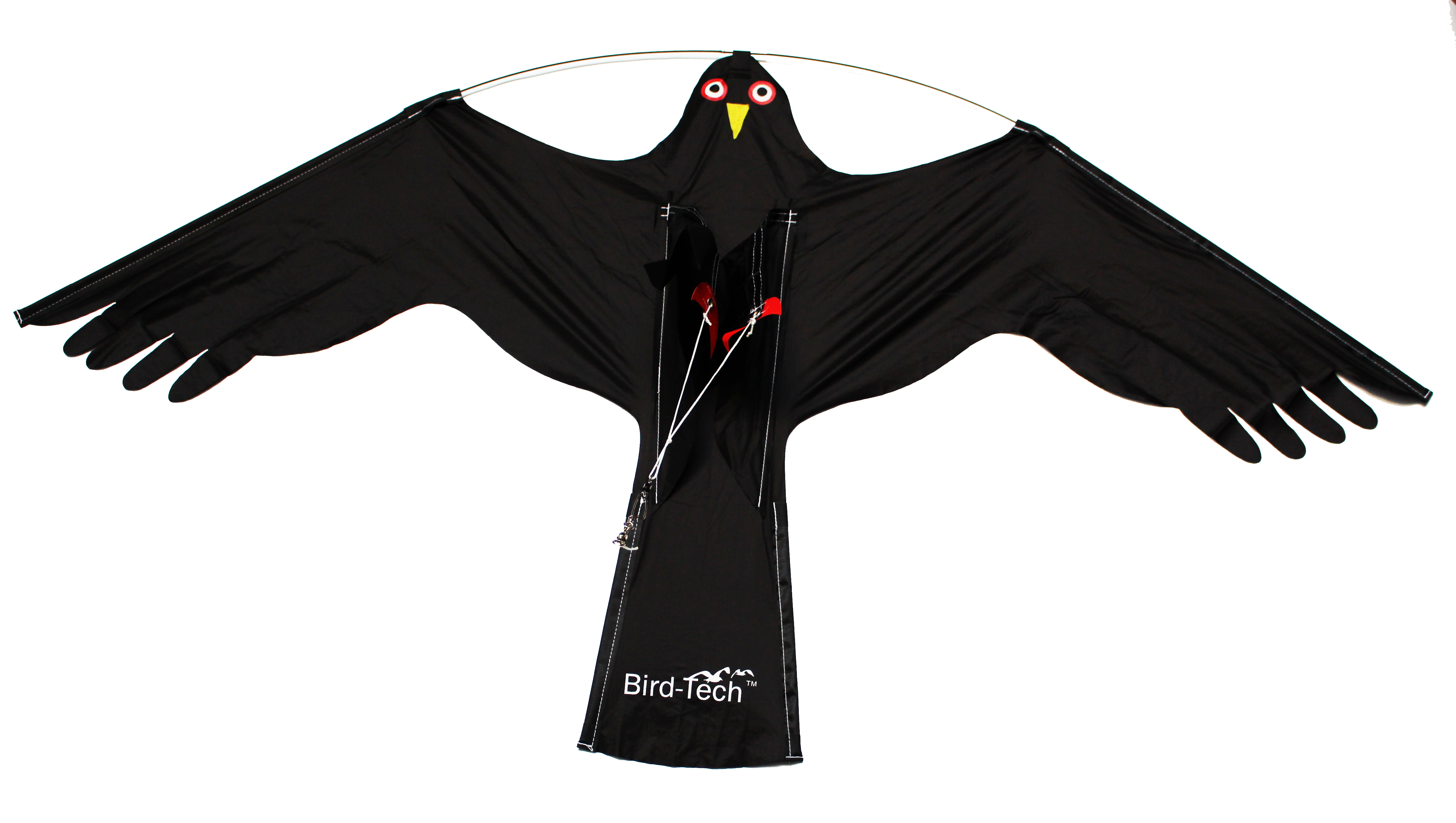 BirdRaider