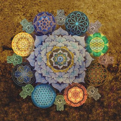 Lotus Mandala Collection
