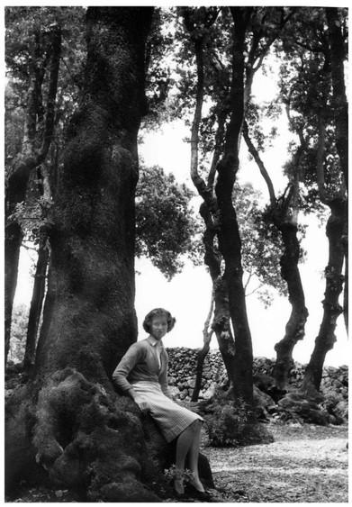 Mary Zimbalist : Photographs : Mary under tree
