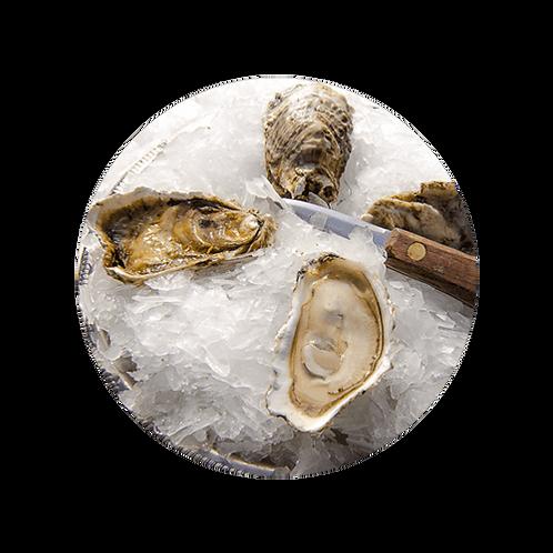 Cedar Point Oysters