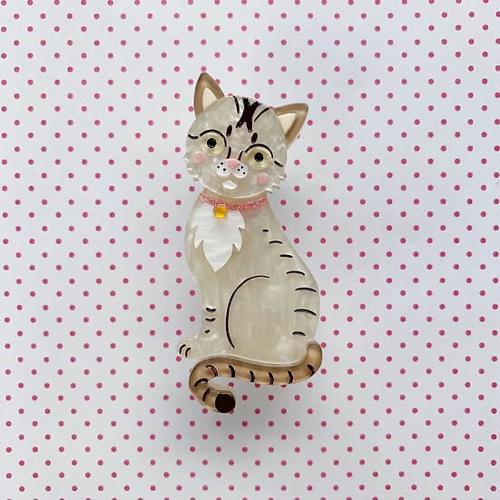 Comel the Singapura 'Kucinta' Cat