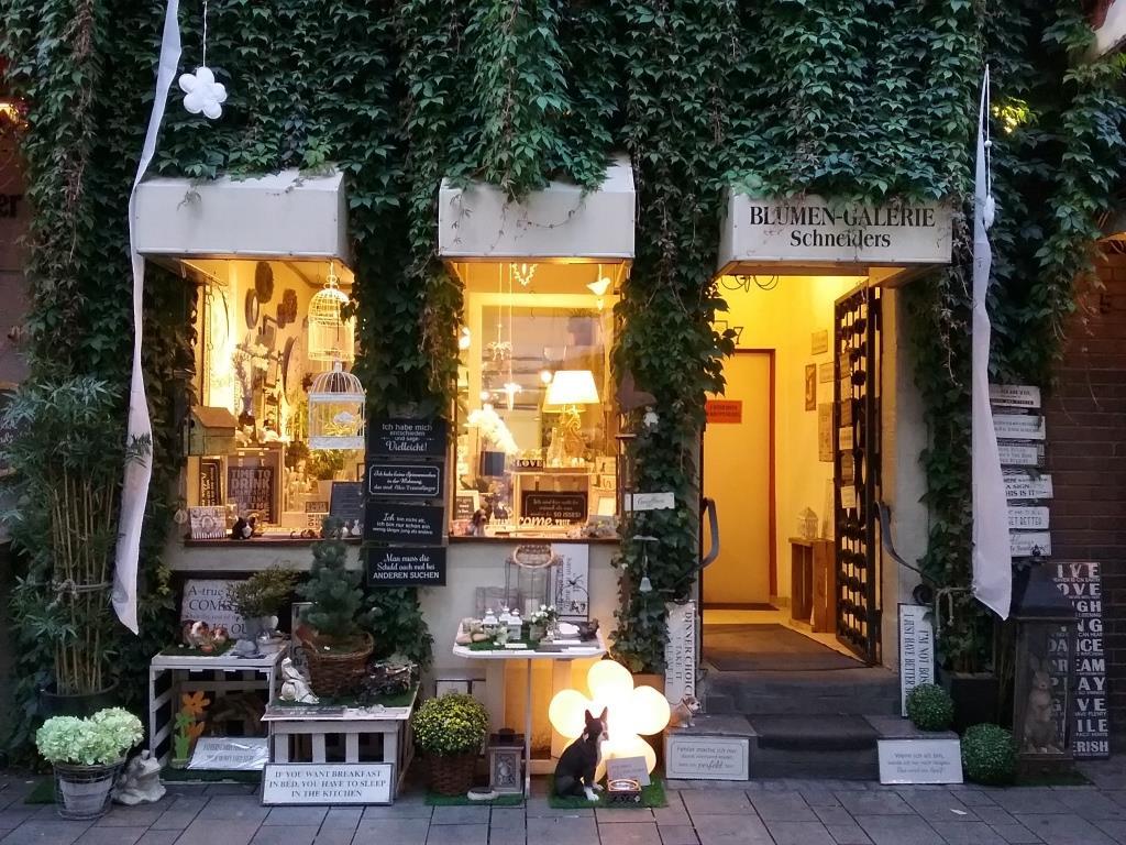 Blumen-Galerie Schneiders Web