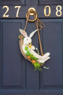 A rabbit1.jpg