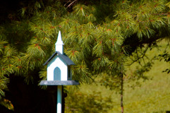 Church birdhouse.jpg