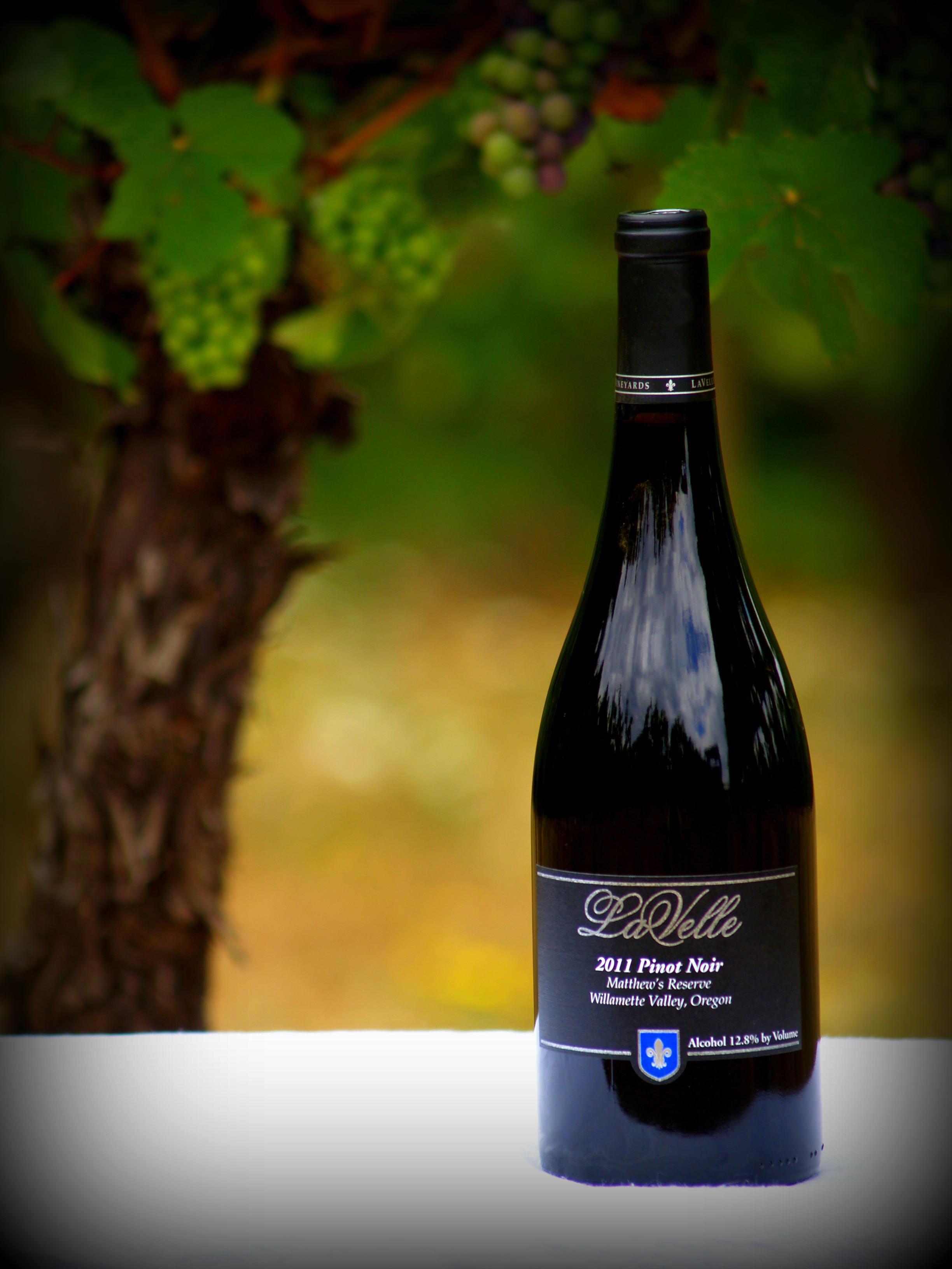 LaVelle Vineyards - Winery, Vineyard, Oregon Wines
