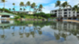 lagoon-foundation-poipu-vacation_3.jpg