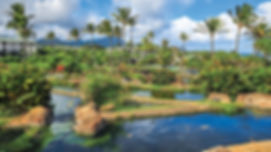 lagoon-foundation-poipu-vacation_1.jpg