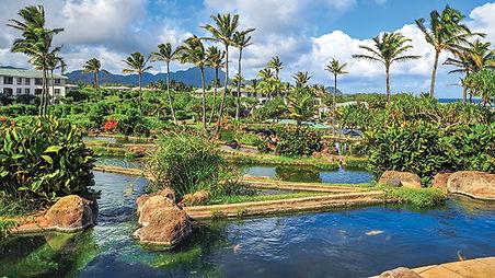 lagoon-foundation-poipu-vacation_1.jpg
