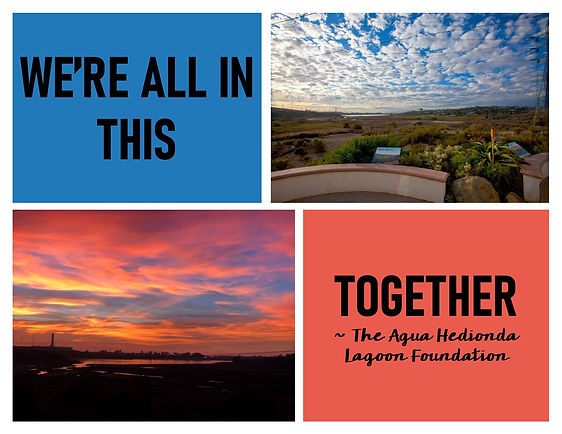 agua-hedionda-were-all-in-this-together.