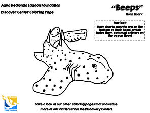 Beeps-Horn-Shark-coloring-pages-lagoon-f