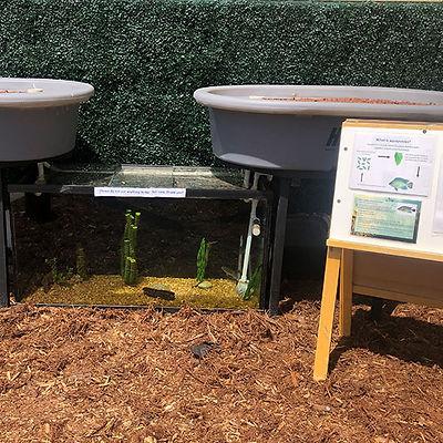 agua-hedionda-lagoon-aquaponics.jpg