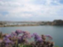 agua-hedionda-lagoon2.jpg
