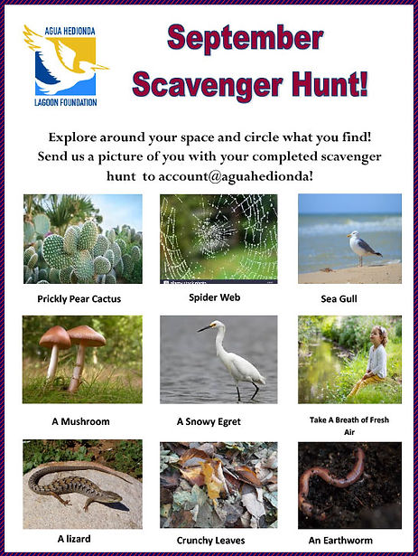 September-Scavenger-Hunt--For-Website.jp
