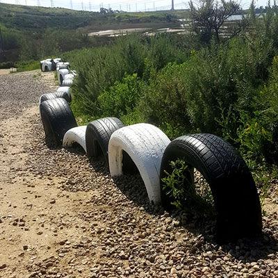 agua-hedionda-lagoon-tire-snake.jpg