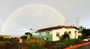 Lagoon-Foundation-Dc-Mural--Rainbow.jpg