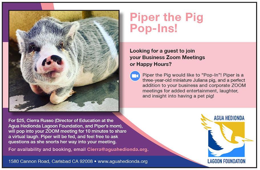 Piper the Pig Virtual Pop In
