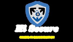 hi secure logo png.png