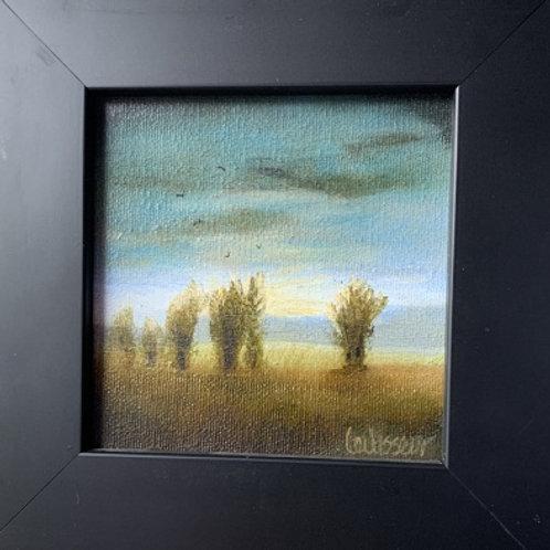 """Field Of Dreams"""