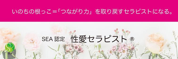seiai_th_900300.jpg