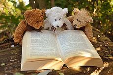 teddy-bear-2855982_1280.jpg