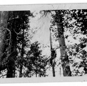smokejumperphotos-Green-1718.jpg