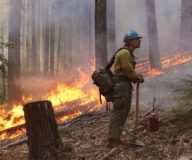 wildland firefighter hotshot crew member holds the fireline during firing operation