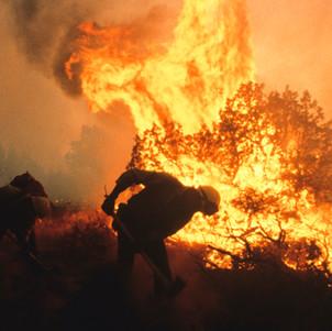 Burning junipers in Central Oregon