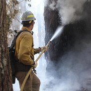 wildland firefighter engine crew member sprays fire with hose