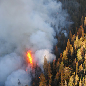 smokejumperphotos-Lydic-819.jpg
