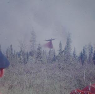 smokejumperphotos-Bina-1480.jpg