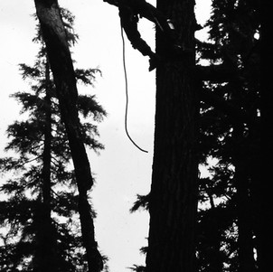 Pushing over a burning snag near the PCT and Mt. Adams in WA