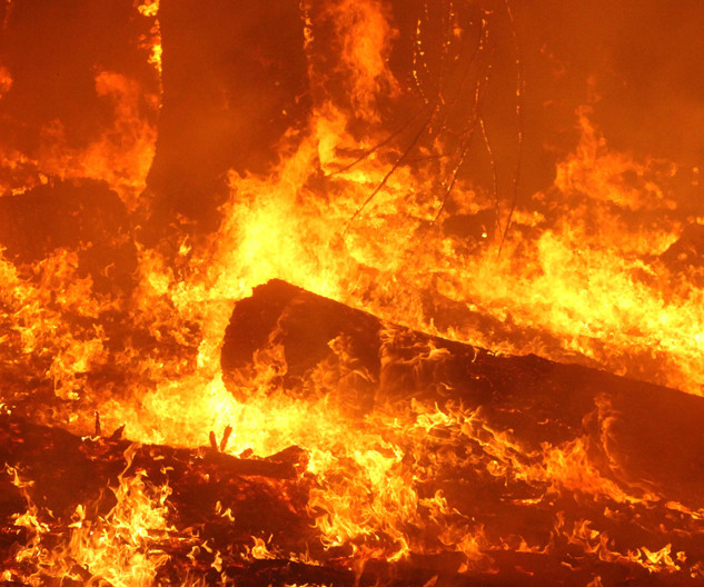 Heavy forest fuels burn at night