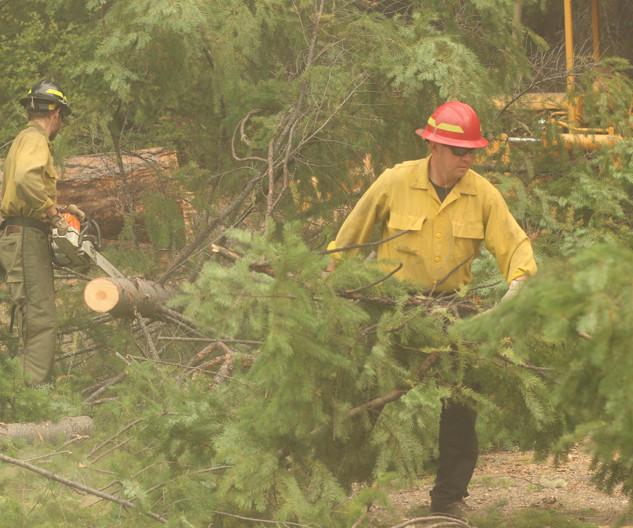 wildland firefighter engine crews move heavy fuels from fireline