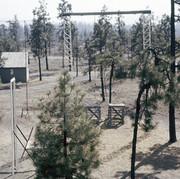 Training Area, Gobi