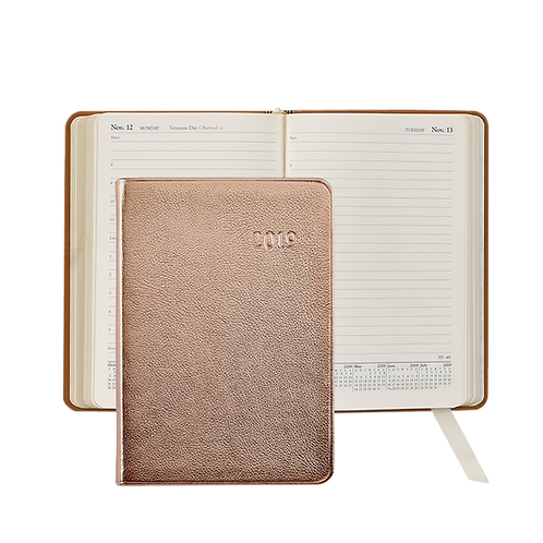 2019 Graphic Image Daily Journal Rose Gold Metallic Leather