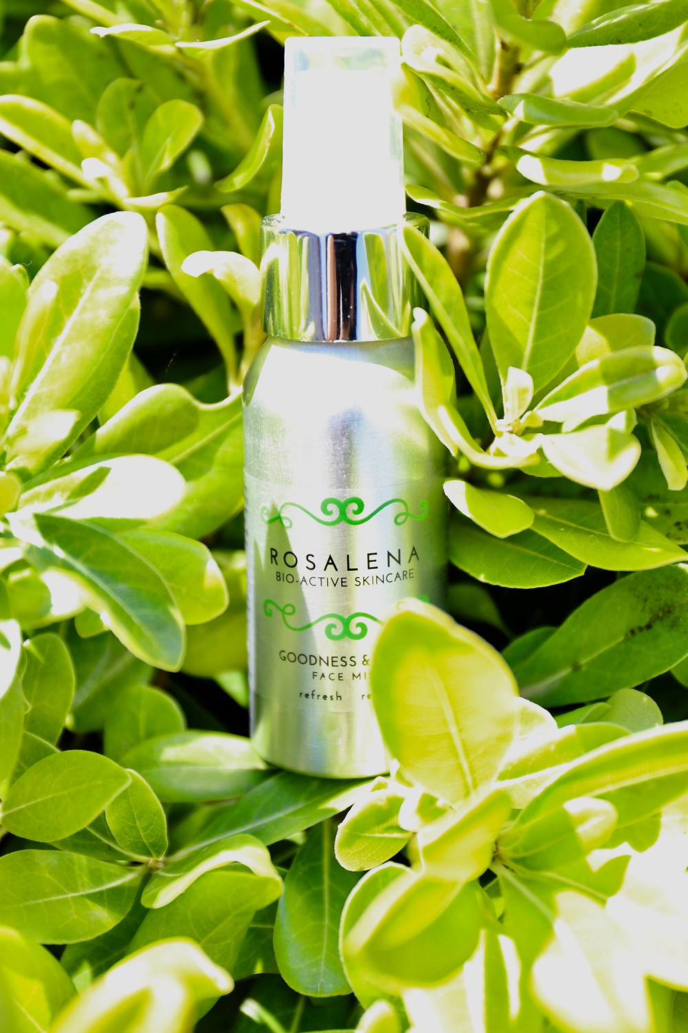 Goodness & Tonic Face Toning Mist