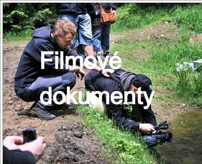 Filmové dokumenty