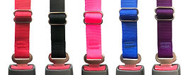 Dog Seatbelt Colors.jpg