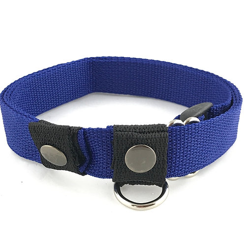 Collar/Leash Combo Blue