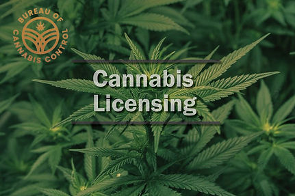canna bis b licensing.jpg