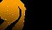 VSMF Logo