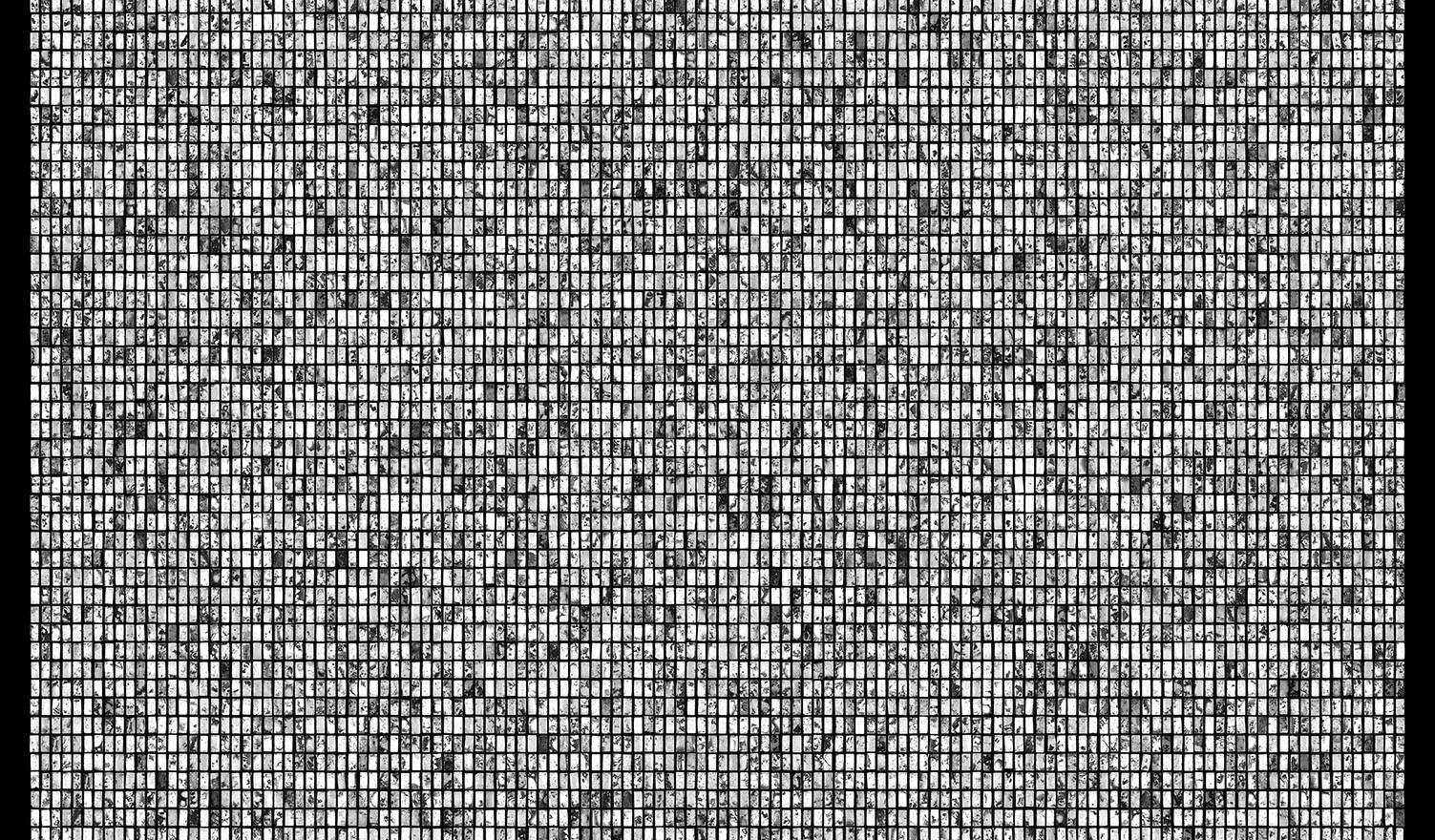 Society 014 193x145cm 145x110cm Pigment Inkjet  2017