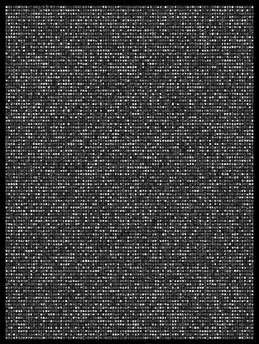 Society 020 193x145cm 145x110cm Pigment Inkjet  2017
