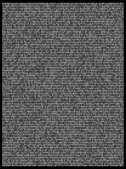 Society 008 193x145cm 145x110cm Pigment Inkjet  2017